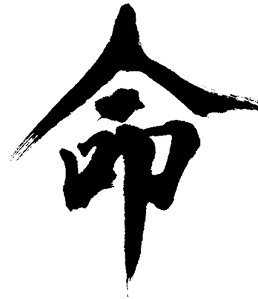 Ming-life-destiny-calligraphy-R-Jahnke.p