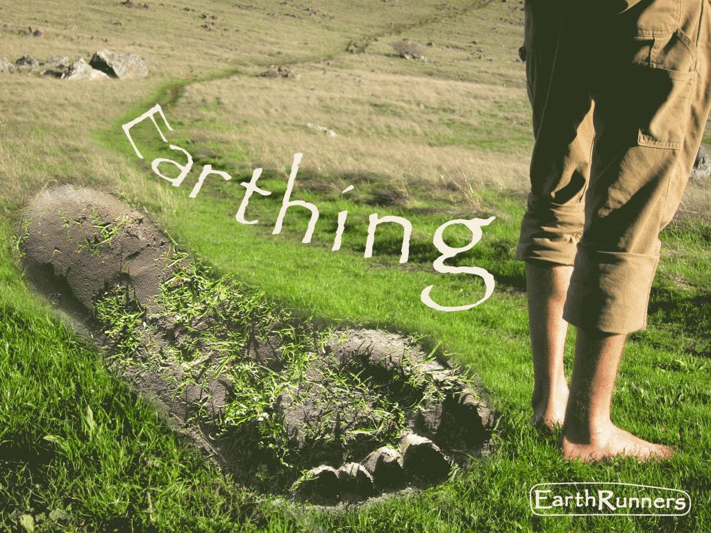 Earthing2-1024x768