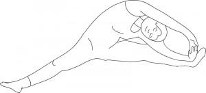 Lilian Kluivers 6 Gallbladder