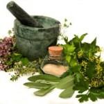 Medicinal-Herbs-300x199