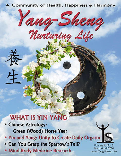 Yang-Sheng Cover -- Mar-Apr 2014