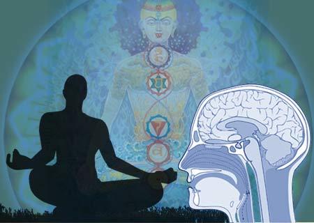 meditation-brain-2